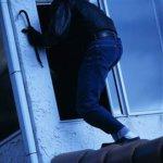 В Коростенском районе полиция задержала дачного вора