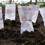 Отримані доходи від обробітку землі необхідно декларувати