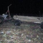 На Коростенщині затримано лісокрадіїв