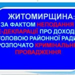 На Житомирщині за фактом неподання е-декларації про доходи головою районної ради розпочато кримінальне провадження