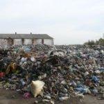 Неприємну знахідку, яка приголомшила Коростенський район, виявили жителі села Ходаки на території своєї сільської ради – звалище львівського сміття