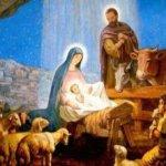 Сайт Коростень-інфо від щирого серця вітає з Різдвом Христовим католиків міста Коростеня та Коростенського району!