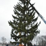 Возле городского Дворца культуры им. Т. Шевченко началось установление главной новогодней елки