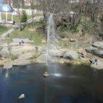 Возобновлена работа фонтана на реке Уж
