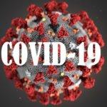 Ситуація щодо коронавірусу на Житомирщині станом на 24 березня