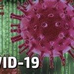 В Коростені на COVID-19 захворіли діти: 6-місячний та 7-річний хлопчики