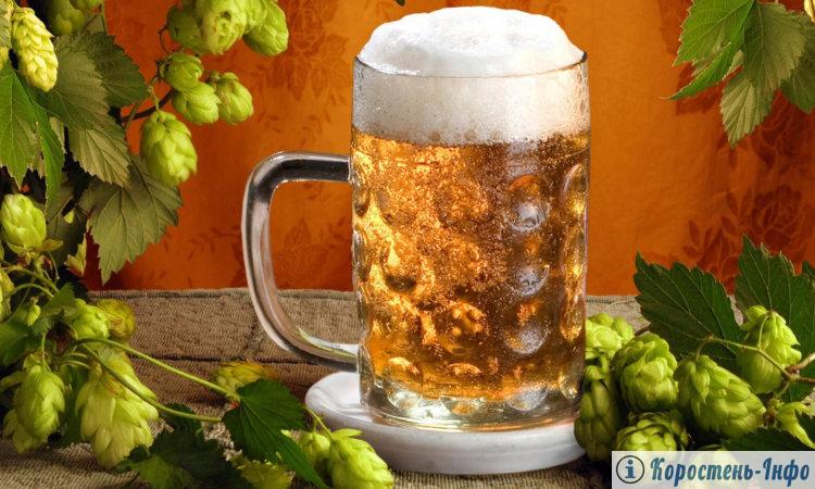 что такое пиво и как его делают